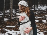 How to Best Care for Your Pet Dog?